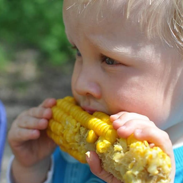 baby eating corn